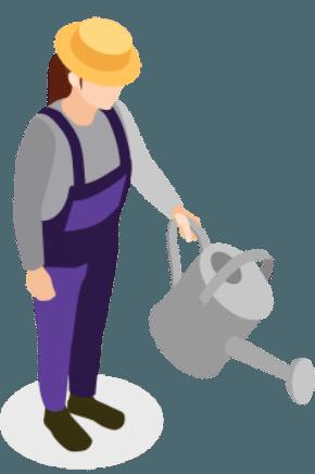 Fertilizing Icon