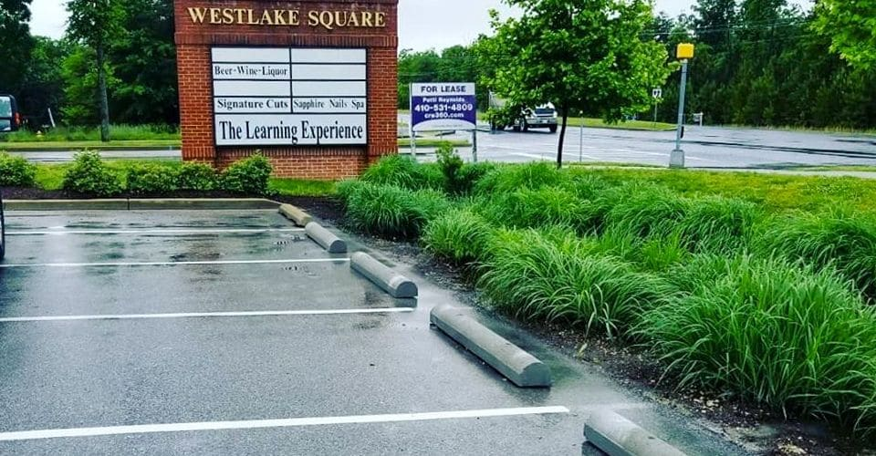 Business Parking Lot Landscaping
