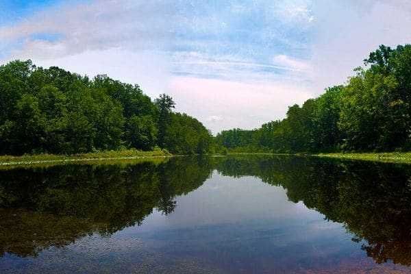 A wide river with lush trees on the banks in Waldorf Maryland